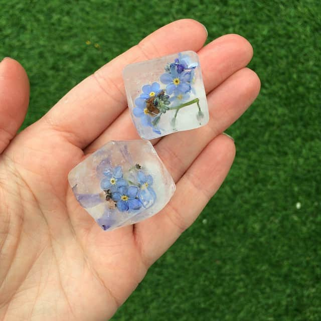 Easy how-to make Forget me not flower ice cubes