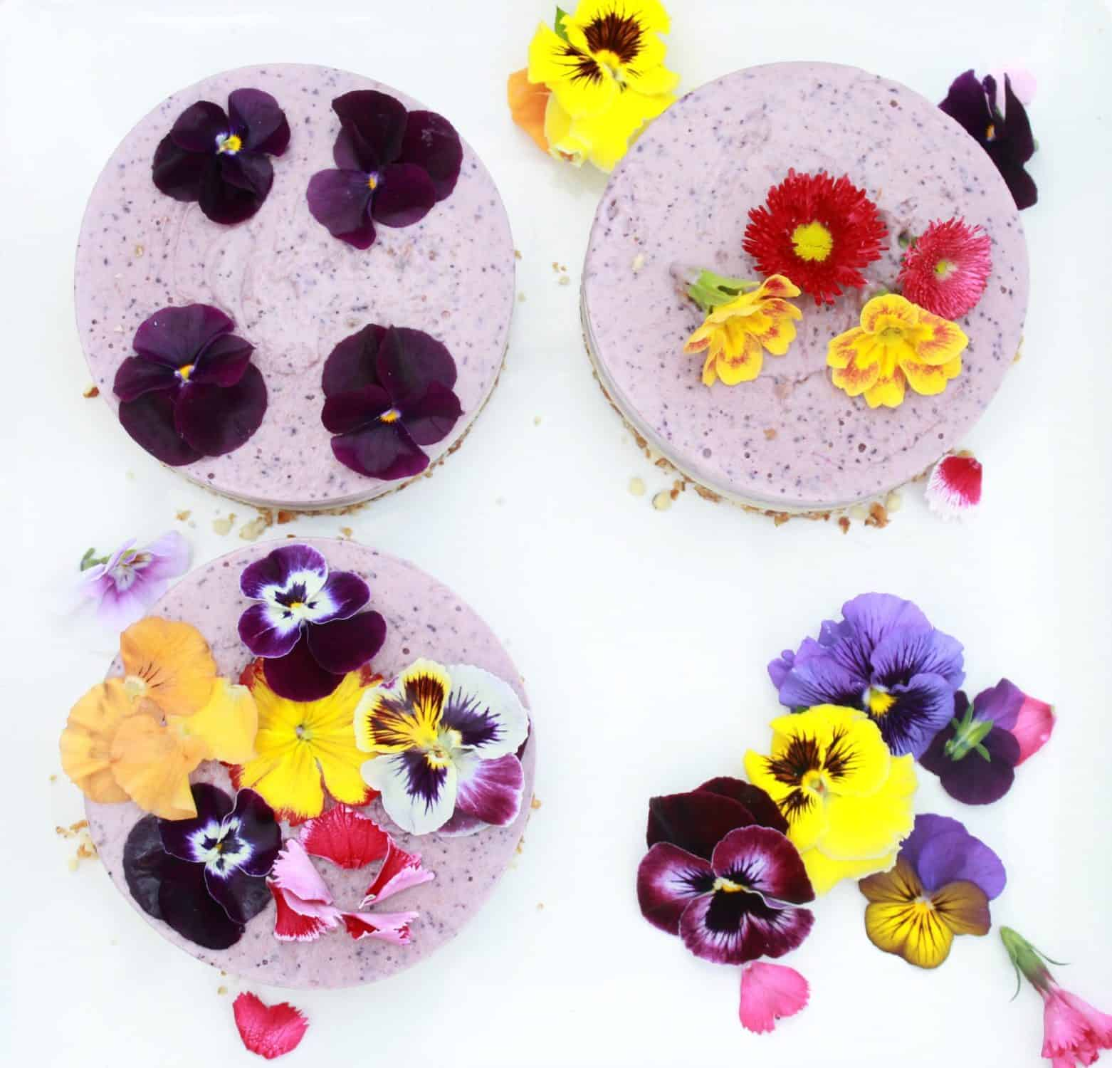 Mini raw berry cheesecakes topped with edible flowers.