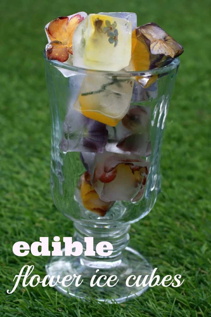 How to make beautiful flower ice cubes for a Summer garden party