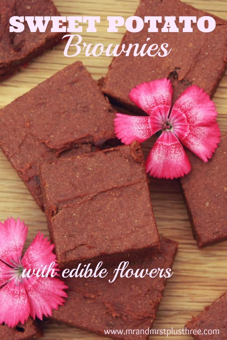 Beautifully sticky sweet potato brownies, vegan and gluten free! http://www.amytreasure.com