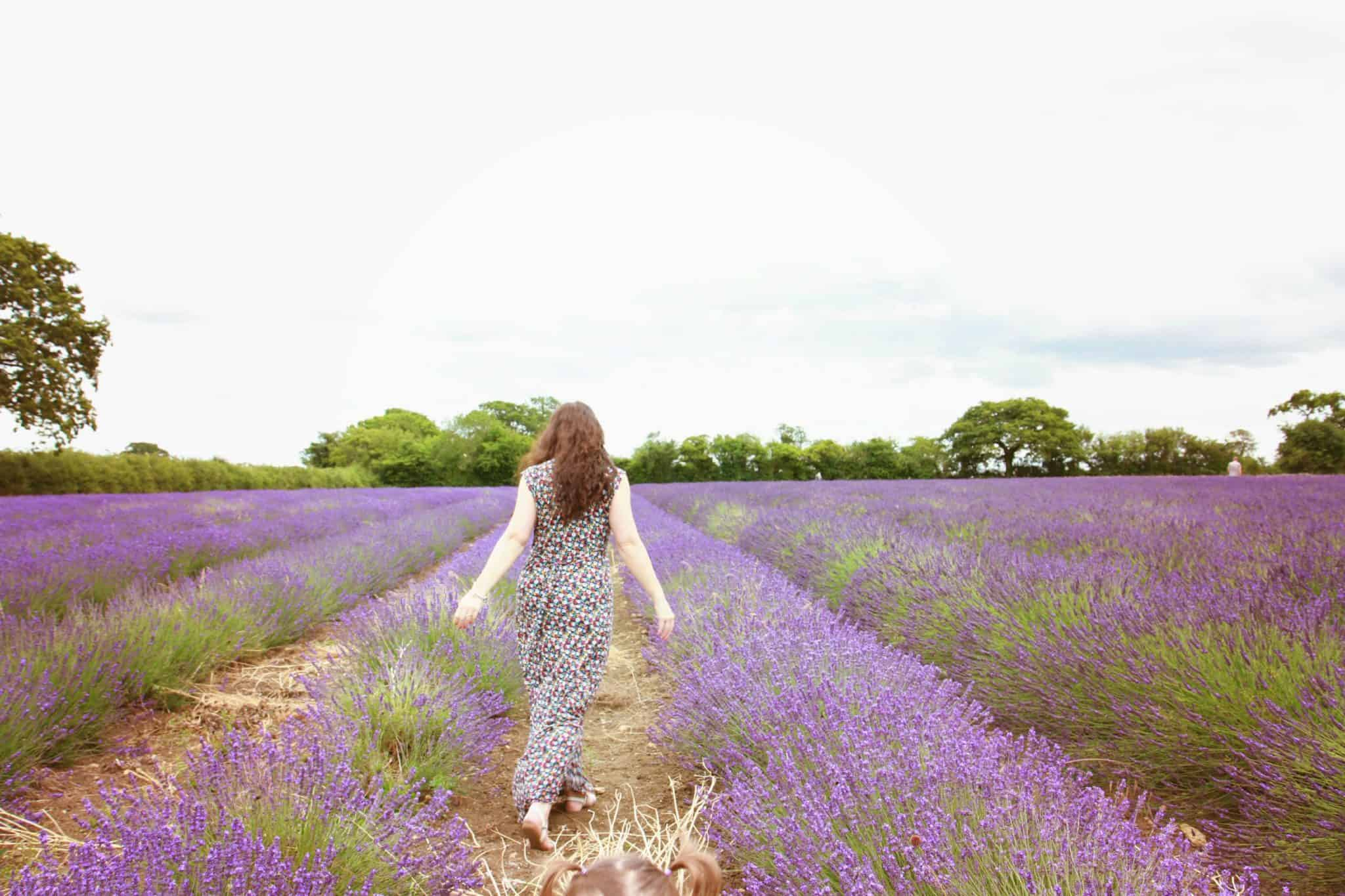 Back view of French Connection maxi dress, photographed at the beautiful Somerset Lavender fields