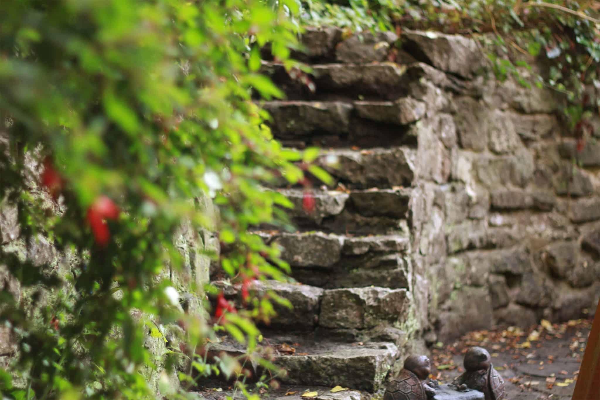 handmade garden steps leading to quarry wall