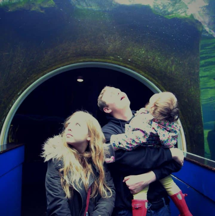 In the underwater viewing tunnel at Bristol Zoo