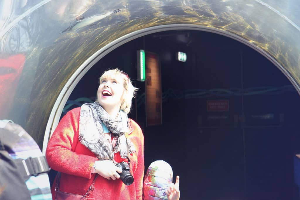 In the penguin tunnel