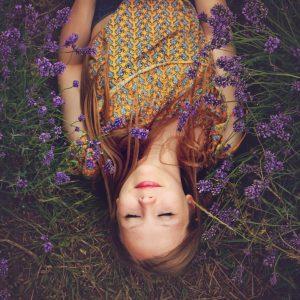 Holly Treasure in lavender