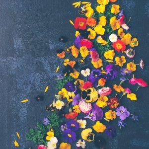 An assortment of edible flowers