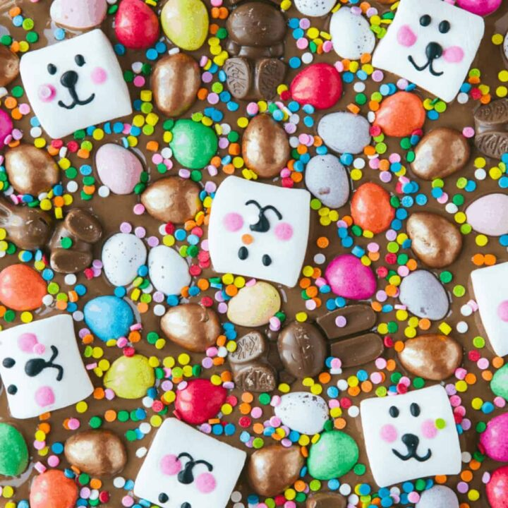 Close up of Easter chocolate bark